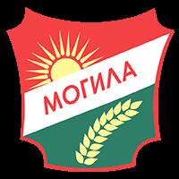 Општина Могила
